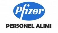 Pfizer İlaç İş Başvurusu