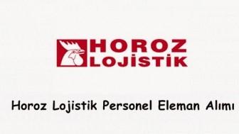 Horoz Lojistik İş Başvurusu