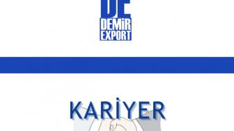 Demir Export İş Başvurusu